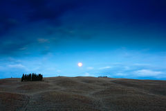 Paisagem da noite de Toscânia, lua com a árvore no fiedl, obscuridade - o céu azul com estrelas, montes ondulados da noite ajardi Fotografia de Stock