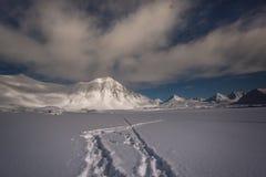 Paisagem da noite do ártico fotos de stock