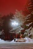 A paisagem da noite do inverno - parque nevado com o banco sob as árvores Foto de Stock Royalty Free