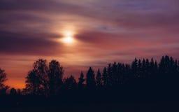 Paisagem da noite e céu estrelado nebuloso Imagem de Stock Royalty Free
