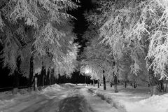 Paisagem da noite no inverno fotografia de stock
