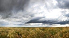 Paisagem da pradaria da nuvem de tempestade Fotos de Stock
