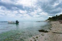 Paisagem da praia em Tulum fotografia de stock