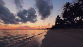 Paisagem da praia tropical da ilha do para?so e do nascer do sol bonito Praia tropical com palmeira vídeos de arquivo