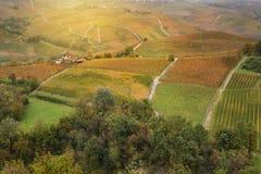 Paisagem da região do vinho de Barolo imagem de stock