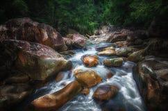 Paisagem da selva com água de fluxo de turquesa da cachoeira georgian da cascata profundamente - na montanha verde da floresta de fotografia de stock