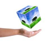 Paisagem da terra arrendada da mão da mulher no cubo 3D Foto de Stock Royalty Free