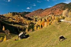 Paisagem da vila em Romania Fotografia de Stock Royalty Free