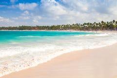 Paisagem das caraíbas litoral Sandy Beach fotografia de stock royalty free