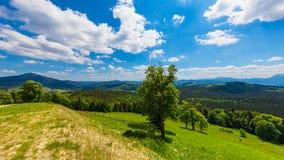 Paisagem das montanhas Carpathian Fotos de Stock Royalty Free