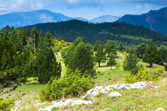 Paisagem das montanhas no dia de verão pyrenees Fotografia de Stock Royalty Free