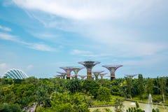 Paisagem de árvores super em jardins pela baía, Singapura fotografia de stock