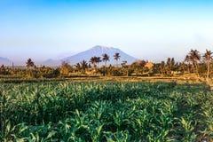 Paisagem de Agung da montagem Volcano Agung santamente Ilha de Bali fotografia de stock