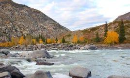 Paisagem de Altai Foto de Stock