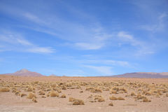 Paisagem de Altiplano Fotografia de Stock Royalty Free
