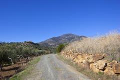 Paisagem de Andalucian com a trilha cênico com montanha Fotos de Stock Royalty Free