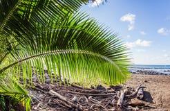 Paisagem de Costa Rica Imagem de Stock