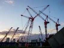 Paisagem de Crane Evening imagem de stock