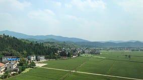 Paisagem de cultivar o campo em China imagem de stock royalty free