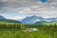 Paisagem de Denali foto de stock royalty free