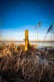 Paisagem de Fenland no inverno Fotos de Stock Royalty Free
