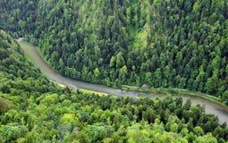 Paisagem de Forest Mountain com rio Dunajec de Sokolica máximo, Fotos de Stock Royalty Free