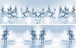 Paisagem de Forest Winter do inverno foto de stock