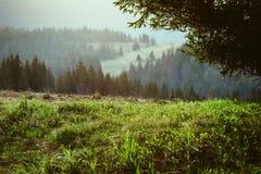 Paisagem de grandes montanhas no por do sol Imagem de Stock Royalty Free