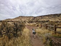 Paisagem de Idaho Imagem de Stock Royalty Free
