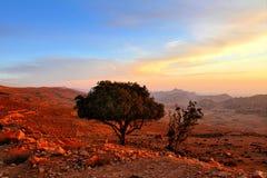 Paisagem de Jordânia Foto de Stock Royalty Free