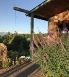 Paisagem de julho das marcas Ridge Winery, casa doce, Oregon fotografia de stock royalty free