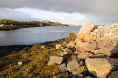 A paisagem de Kola Peninsula, Rússia Foto de Stock Royalty Free