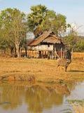 Paisagem de Laos imagens de stock royalty free