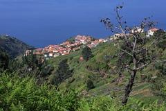 Paisagem de Madeira Imagens de Stock Royalty Free