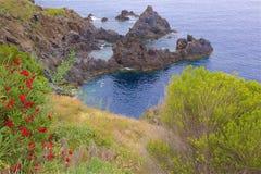 Paisagem de Madeira Fotos de Stock