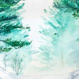 Paisagem de madeira do pinho da floresta do inverno de turquesa da aquarela Fotos de Stock