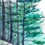 Paisagem de madeira do pinho da floresta do inverno de turquesa da aquarela Foto de Stock Royalty Free