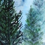 Paisagem de madeira do pinho da floresta do inverno de turquesa da aquarela Imagens de Stock