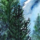 Paisagem de madeira do pinho da floresta do inverno de turquesa da aquarela Foto de Stock