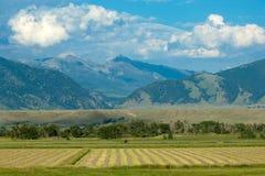 Paisagem de Montana fotografia de stock royalty free