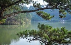 Paisagem de montanhas de Dalat em Vietname Fotos de Stock Royalty Free
