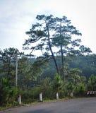 Paisagem de montanhas de Dalat em Vietname Fotos de Stock