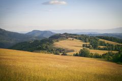 Paisagem de montanhas verdes Imagem de Stock Royalty Free