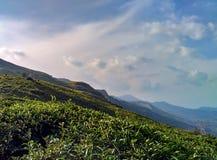 Paisagem de Munnar Foto de Stock Royalty Free