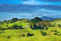 Paisagem de Nova Zelândia Foto de Stock Royalty Free