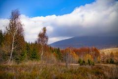 Paisagem de picos outonais dos Carpathians fotos de stock royalty free