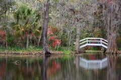 Jardim e lagoa do sul da paisagem foto de stock