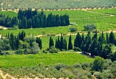 Paisagem de Provence foto de stock