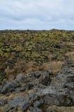 Paisagem de Rocky Icelandic de um campo de lava imagem de stock