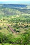 Paisagem de Serengeti fotografia de stock royalty free